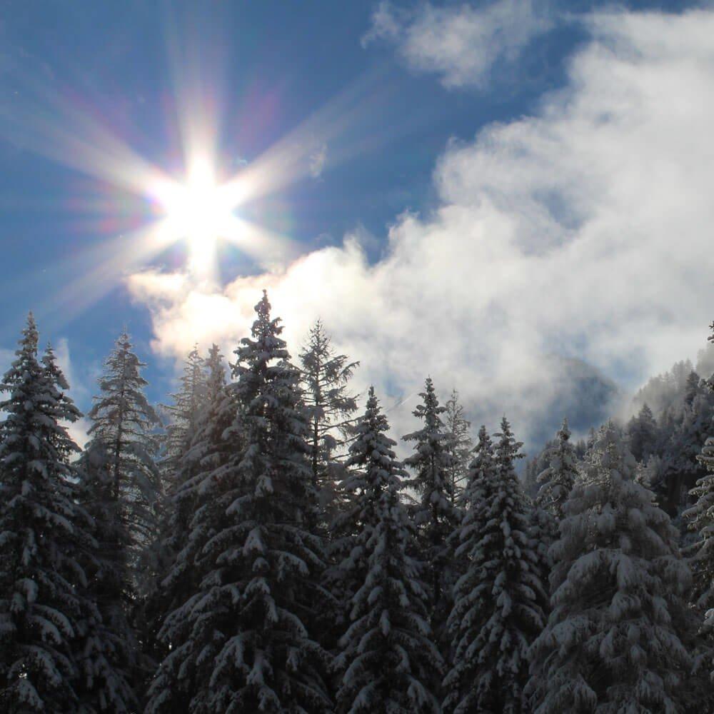 Almchalet Sagstaller - Winterurlaub in Südtirol